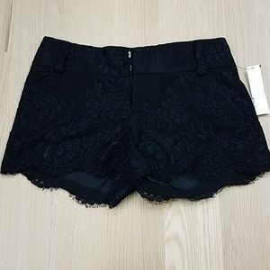 Alice and olivia lace black shorts